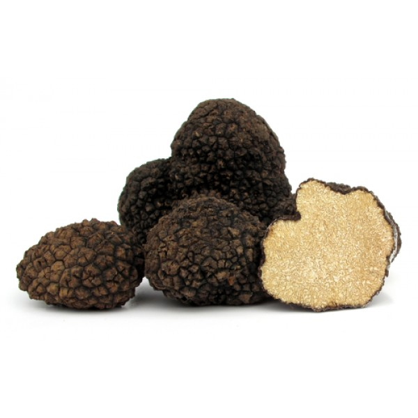 fresh italian black summer truffles